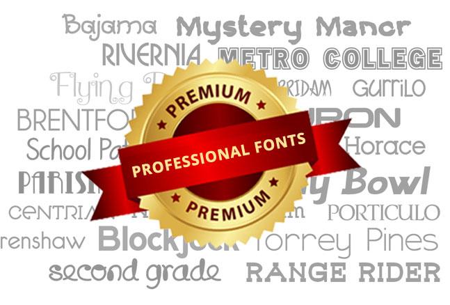 Professional Fonts Responsive cv