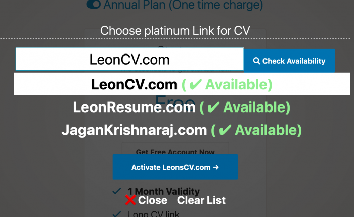 Inbuilt Domain search functionality responsive cv