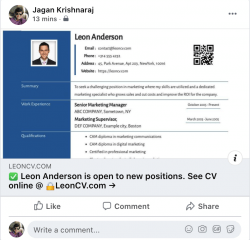 Responsive CV on facebook