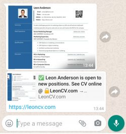 Whatsapp on android responsive cv